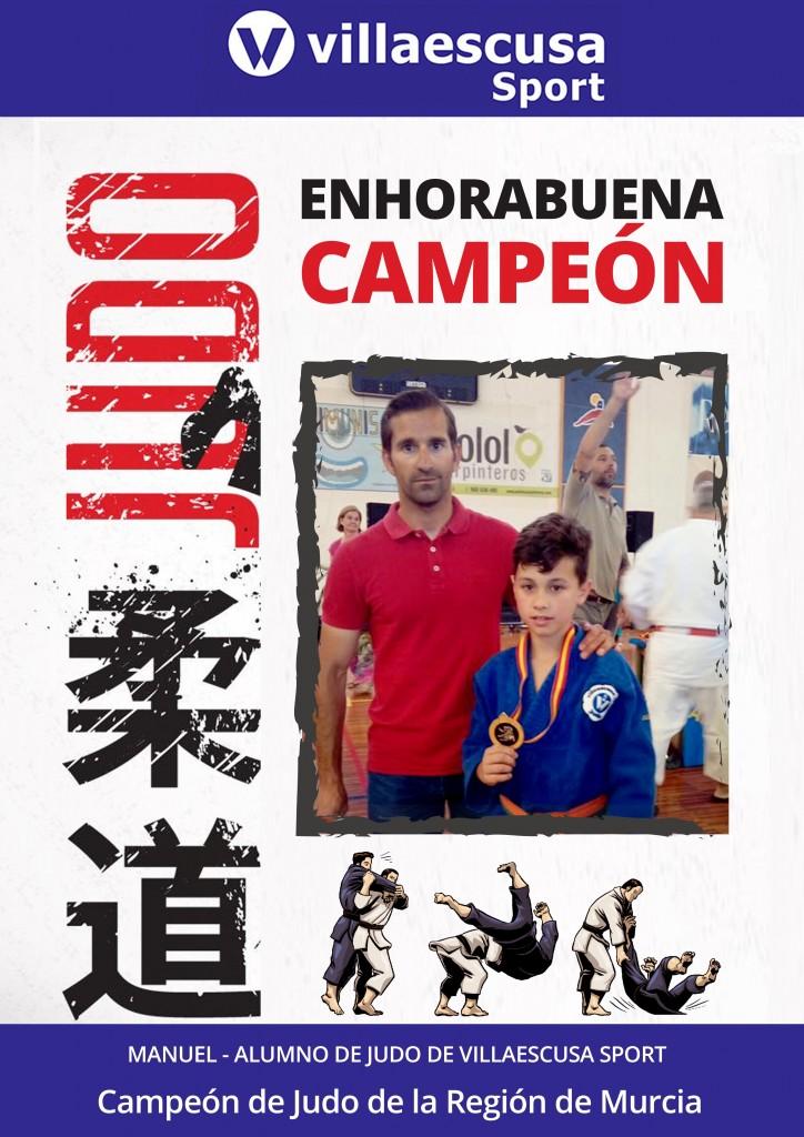 Cartel campeón judo